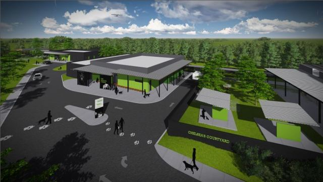 Greenville Humane Society Starts Fundraising Campaign