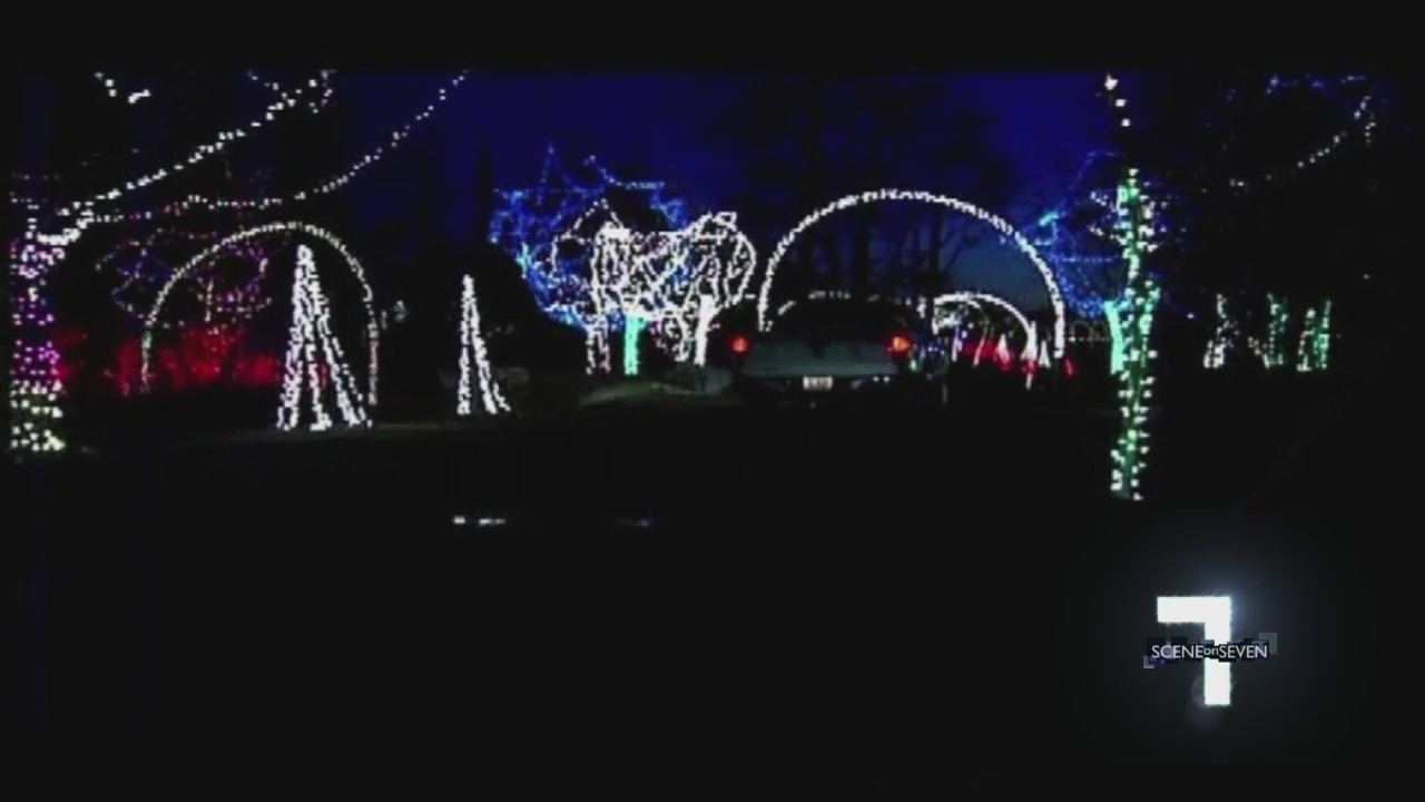 holiday light shows to check out