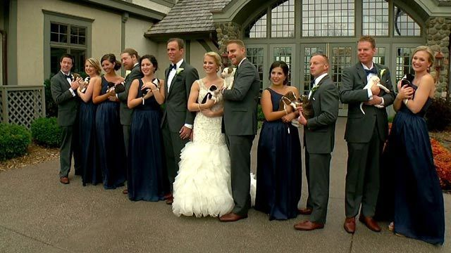 Couple uses puppy bouquets instead of flowers for wedding photos