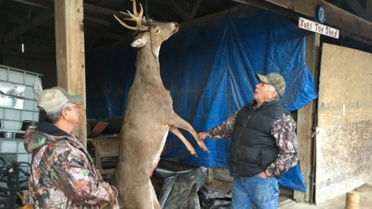 Prized buck turns out to be 8-point doe in Wisconsin