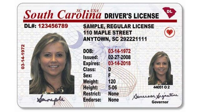check your sc real id eligibility online