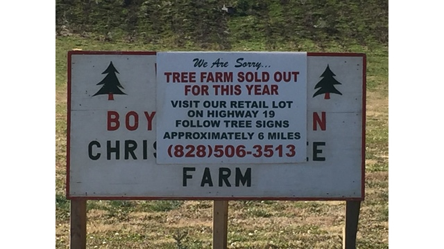 Boyd Mountain Christmas Tree Farm - Sold Out!