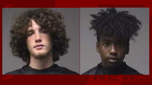 Teens charged with damaging Doodle Trail