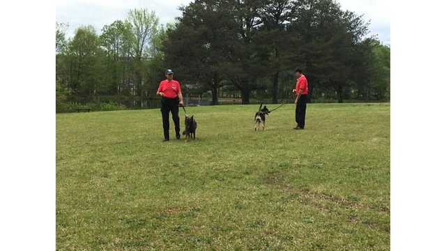 K-9 program specializes in tracking missing Autistic children