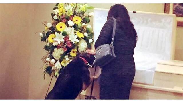 Dog visits funeral home for last goodbye to beloved owner