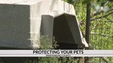 Spartanburg Co. Council to propose changes to better protect pets