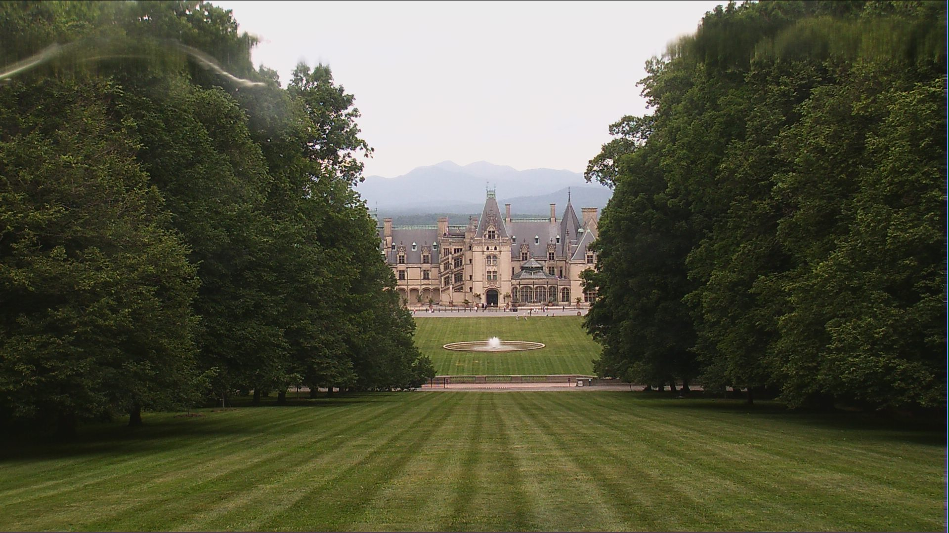biltmore webcam